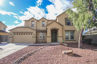 Tucson Single Family Home For Sale: 4901 W Calle Don Roberto