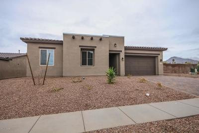 Tucson Single Family Home For Sale: 2974 S Open Range Way