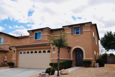 Oro Valley Single Family Home For Sale: 1315 W Camino Mesa Sonorense