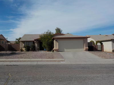 Tucson Single Family Home For Sale: 700 S Sunfield Canyon