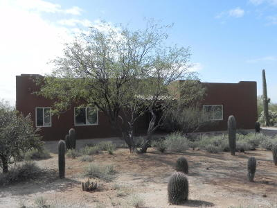 Tucson Single Family Home For Sale: 12120 N Camino Del Fierro