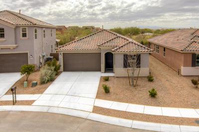 Tucson Single Family Home For Sale: 5190 E Arguedas Way