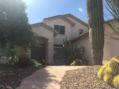 Tucson Single Family Home For Sale: 11041 N Tapestry Drive