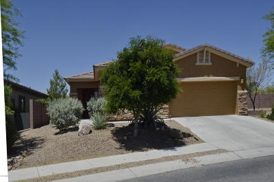 Marana Single Family Home For Sale: 12763 N New Reflection Drive
