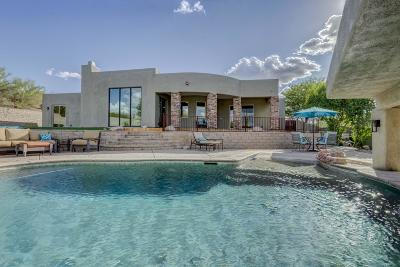 Tucson Single Family Home For Sale: 5880 N Tucson Mountain Drive