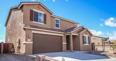 Tucson Single Family Home For Sale: 3535 W Tiana Court