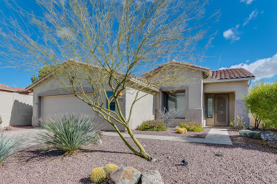 Oro Valley Single Family Home For Sale: 120 W Mountain Sage Drive