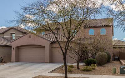 Tucson Single Family Home For Sale: 10824 E Bitterroot Court