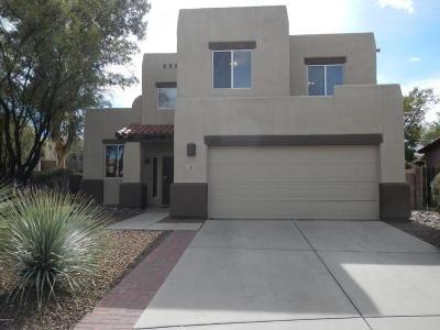 Tucson Single Family Home For Sale: 163 N Nightfall Avenue