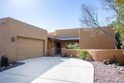 Tucson Single Family Home For Sale: 10320 E Willis Barnum Lane