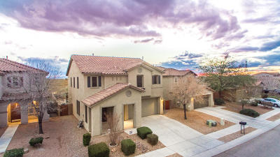 Tucson Single Family Home For Sale: 4872 E Desert Thorn Drive