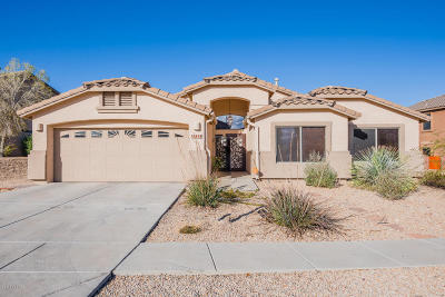 Single Family Home Active Contingent: 10838 S Distillery Canyon Spring Drive