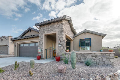 Marana Single Family Home For Sale: 14160 N Lava Falls Trail