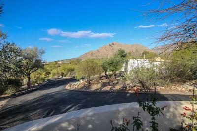 Oro Valley Single Family Home For Sale: 202 E Suffolk Drive