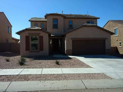 Vail Single Family Home For Sale: 686 S Desert Haven Road