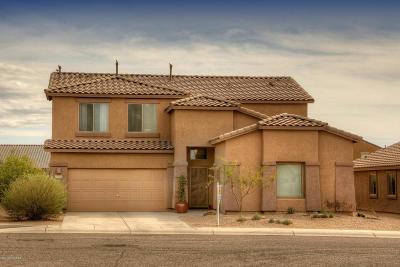 Marana Single Family Home For Sale: 11147 W Tonto Basin Drive