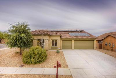 Single Family Home For Sale: 982 W Calle Barbitas