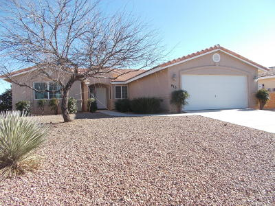 Single Family Home For Sale: 916 W Saguaro Drive