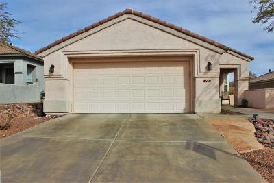 Marana Single Family Home Active Contingent: 13558 N Holly Grape Drive