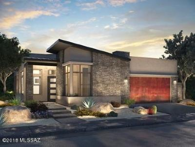 Oro Valley Single Family Home For Sale: 14250 N Stone View Place N