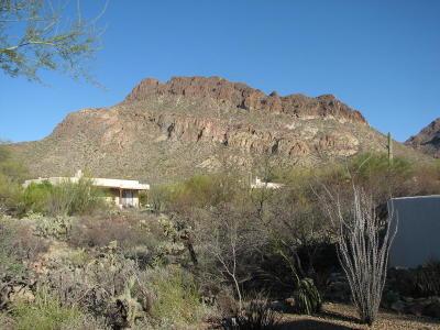 Tucson AZ Single Family Home For Sale: $284,500