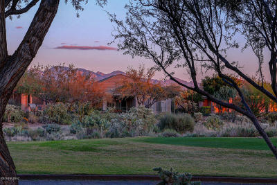 Marana Single Family Home Active Contingent: 5450 W Winding Desert Drive