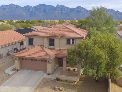 Oro Valley Single Family Home For Sale: 635 W Red Barberry Drive