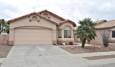 Tucson Single Family Home For Sale: 9520 E Briana Lane