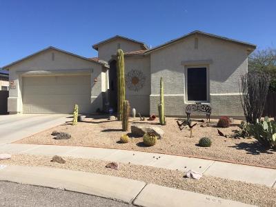 Tucson Single Family Home For Sale: 3237 S Desert Echo Road