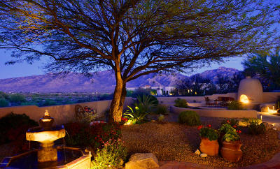 Oro Valley Single Family Home For Sale: 13770 N Placita Del Cerro Lindo