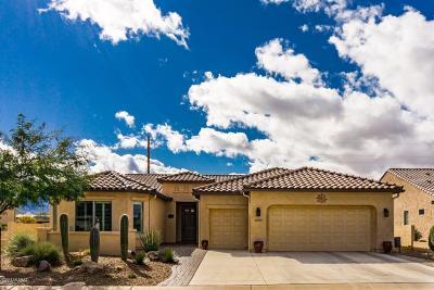 Single Family Home For Sale: 62533 E Border Rock Road