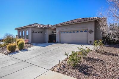 Marana Single Family Home For Sale: 12491 N Sunrise Shadow Drive