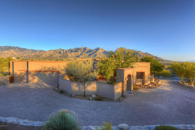Oro Valley Single Family Home For Sale: 454 W Dream Weaver Drive