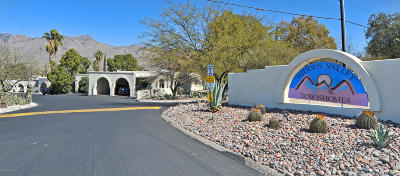 Tucson Townhouse For Sale: 8067 E Shadow Canyon Road