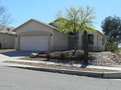 Tucson Single Family Home For Sale: 7716 S Lions Spring Way