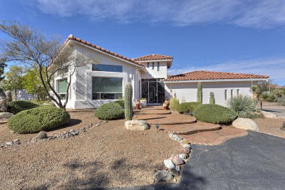 Green Valley Single Family Home For Sale: 1440 S Camino Del Sol