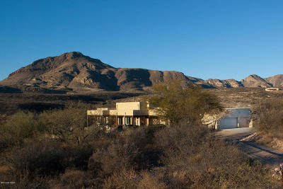 Tubac Single Family Home For Sale: 2038 W Frontage Road