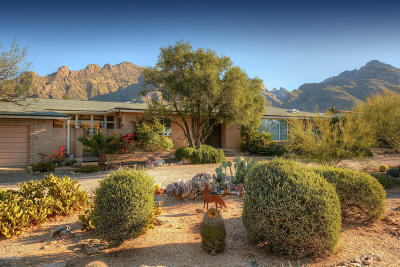 Tucson Single Family Home For Sale: 1141 E Deer Canyon Road