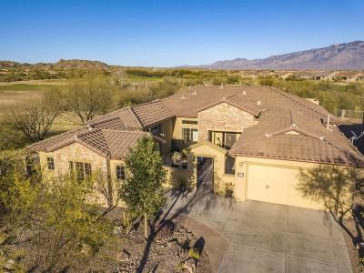 Single Family Home Active Contingent: 13610 N Tessali Way