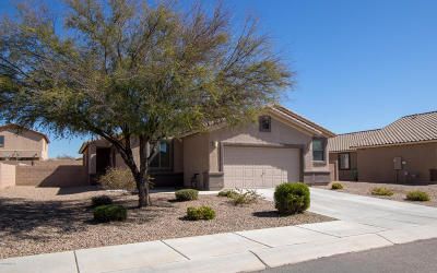 Marana Single Family Home Active Contingent: 13974 N Swift Spear Drive