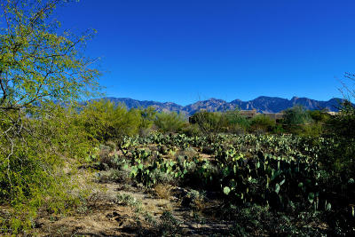 Residential Lots & Land Active Contingent: 14211 N Giant Saguaro Place #24