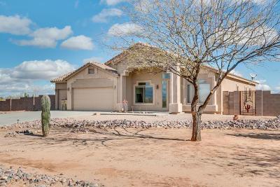 Sahuarita Single Family Home For Sale: 17821 S Golden Valley Drive