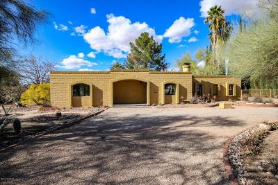 Tucson Single Family Home For Sale: 7221 N San Anna Drive