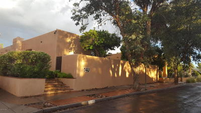 Pima County Single Family Home For Sale: 940 N Olsen Avenue