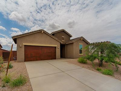 Sahuarita Single Family Home For Sale: 1356 E Stronghold Canyon Lane