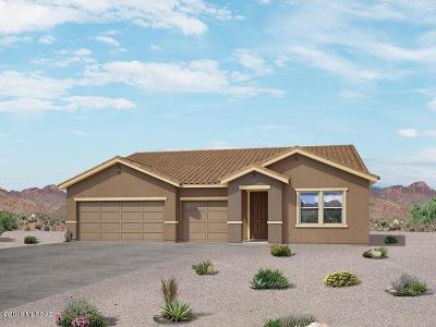 Sahuarita Single Family Home For Sale: 1364 E Stronghold Canyon Lane