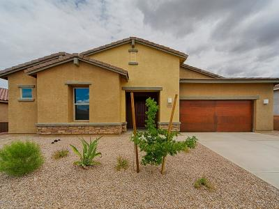Sahuarita Single Family Home For Sale: 1311 E Stronghold Canyon Lane