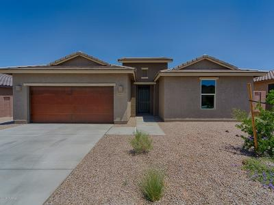 Sahuarita Single Family Home For Sale: 1257 E Stronghold Canyon Lane