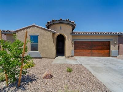Sahuarita Single Family Home For Sale: 1249 E Stronghold Canyon Lane