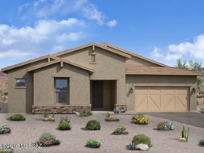 Sahuarita Single Family Home For Sale: 1266 E Stronghold Canyon Lane